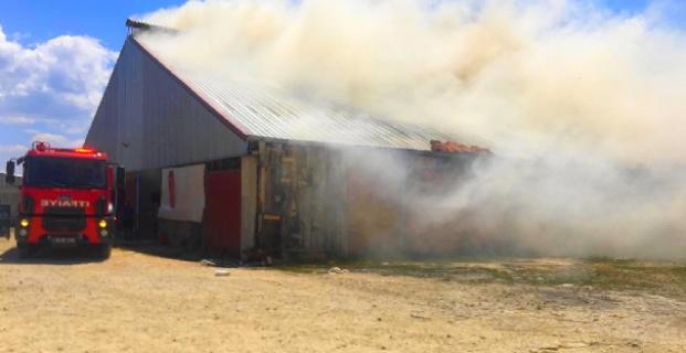 Kargı'da samanlık yandı