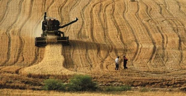 Tarım ürünlerinde fiyatlar açıklandı