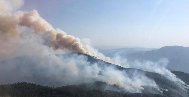 Kargı'da orman yangını! Havadan müdahale ediliyor