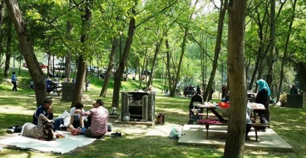 Kargı'da yasak olmayan piknik alanları nereler?
