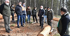 'Ormanların geleceği garanti altında tutulmalı'