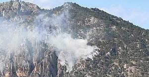 Kargı'da yıldırım düştü, orman yangını başladı