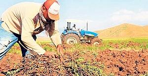 Topraksız çiftçiye müjde!