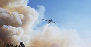 Valilikten son dakika açıklaması! Kargı'da 90 hektar alan yandı