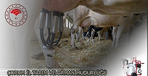 İlçe Tarım Müdürlüğü 'Süt Sağım Makinesi' dağıtacak