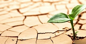 Kuraklıktan etkilenen çiftçiye destek müjdesi!