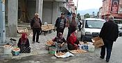 Kargı'da mantar sofralardaki yerini aldı